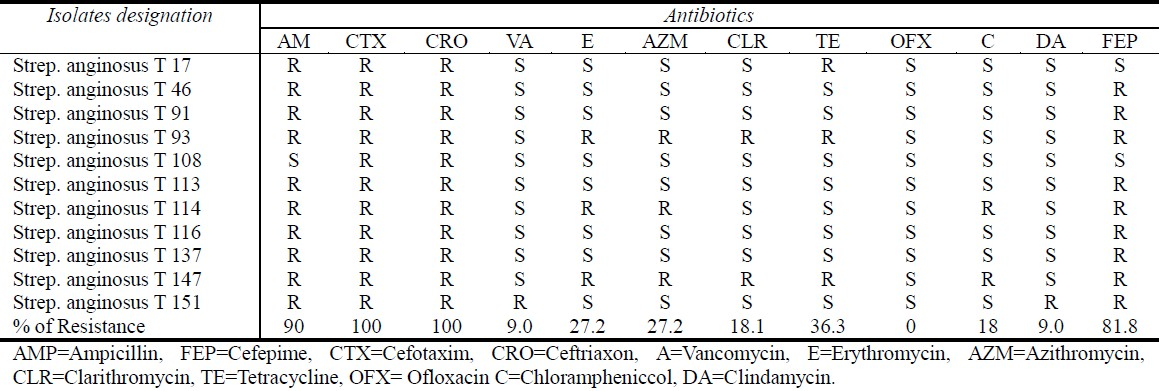 Table 2: Antibiotic resistance of anginosus group streptococci
