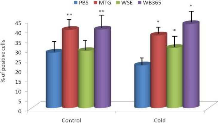 Figure 1: Effect of 14 days of oral feeding on phagocytosis by mouse peripheral blood granulocytes. *Represents significant differences between stressed and control animals at P ≤0.05 level. **Represents significant differences between PBS and tested substances in the control group at P ≤0.05 level.