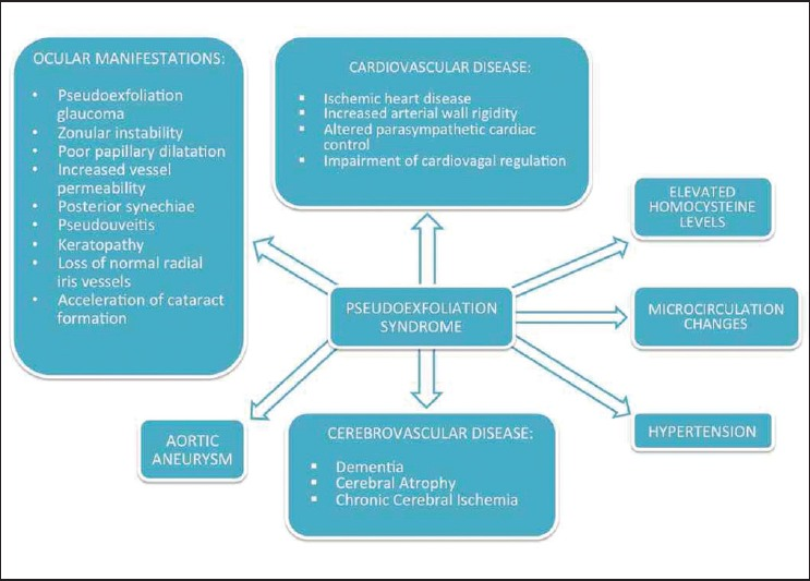 Cardiovascular repercussions of the pseudoexfoliation syndrome ...