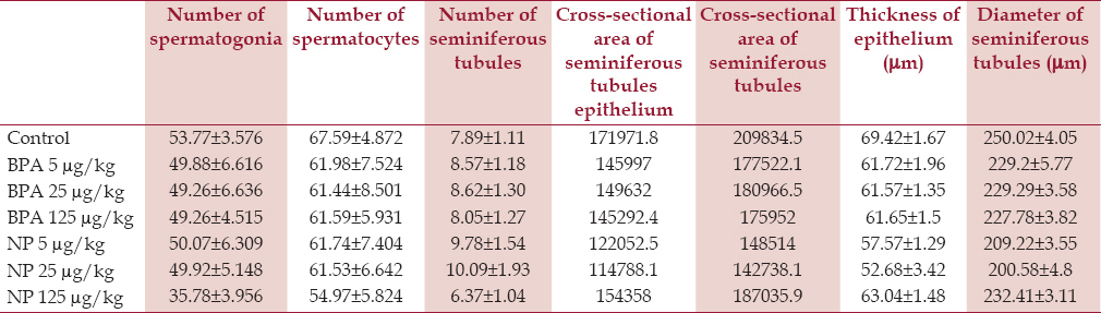 Table 3: Mean (±SD) of the diameter of seminiferous tubules, the thickness of the epithelium, surface are of the cross-sections of the seminiferous tubules and the epithelium of the seminiferous tubules, number of seminiferous tubules, count of spermatocytes and spermatogonia of control, BPA, and NP